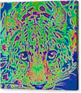 Leopard Eyes Green Canvas Print