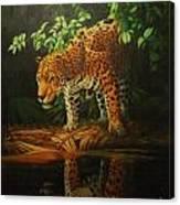 Leopard On Pond Canvas Print