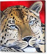 Leopardo Canvas Print