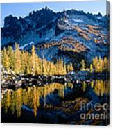 Leprechaun Lake Larch Trees Canvas Print