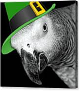 Leprechaun Parrot Canvas Print