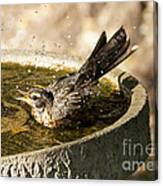 Let The Water Fly Canvas Print