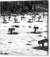 Letchworth Village Cemetery Canvas Print