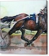 Racehorse Painting In Watercolor Let's Roll Canvas Print