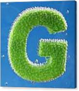 letter G underwater with bubbles  Canvas Print