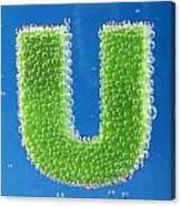 letter U underwater with bubbles Canvas Print