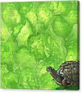 Lettuce Fetish Canvas Print