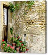Levroux France Entrance Canvas Print