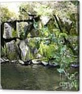 Lewis Creek Trail Canvas Print