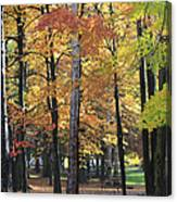 Lexington Park Canvas Print