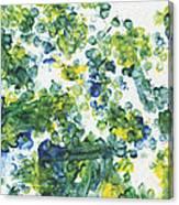 Lians Dandelions Canvas Print