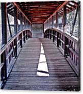 Liberty Bridge Swan Lake Canvas Print