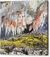 Lichen On Sea Beach Rock Canvas Print
