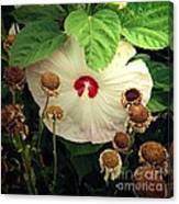 Life And Death In The Garden Canvas Print