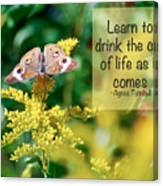 Life Lesson - As It Comes Canvas Print