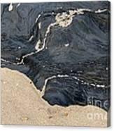 Life On The Beach Canvas Print