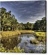 Life On The Marsh Canvas Print