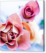 Light And Roses Canvas Print
