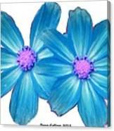 Light Blue Asters Canvas Print
