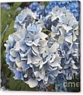 Light Blue Canvas Print