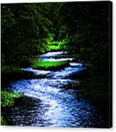 Light In The Creek Canvas Print
