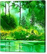 Light N Greens R Canvas Print