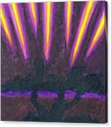 Light Penetrates The Gloom Canvas Print