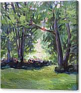 Light Spill Canvas Print