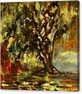 Light Through The Moss Tree Landscape Painting Canvas Print