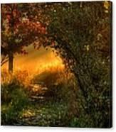 Lighted Path Canvas Print