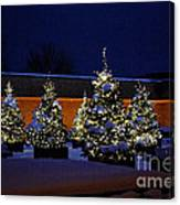 Lighted Trees With Snow Canvas Print