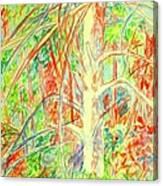 Lightening Struck Tree Again Canvas Print