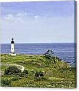 Lighthouse From Salal Hill Canvas Print