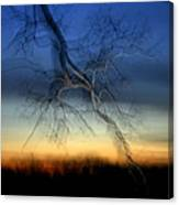 Lightning Branches Canvas Print