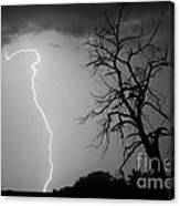 Lightning Tree Silhouette Black And White Canvas Print