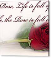 Like The Rose Canvas Print