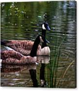 Lila Goose And The King Canvas Print