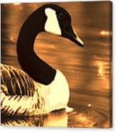 Lila Goose The Pond Queen Sepia Canvas Print