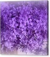 Lilac Fantasy Canvas Print