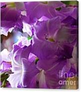 Lilac Flowers Canvas Print