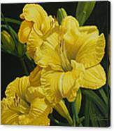 Lilies for Olivia Rose Canvas Print