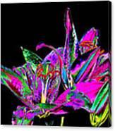 Lilies Pop Art Canvas Print