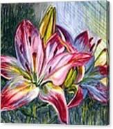 Lilies Twin Canvas Print