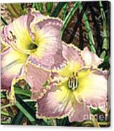 Lillies Clothed In Glory Canvas Print