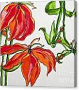 Lilies In Orange Canvas Print