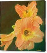 Lilly Enhanced Canvas Print