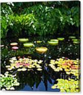 Lilly Garden Canvas Print