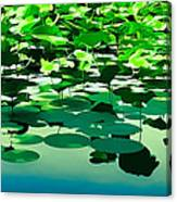 Lilly Pads Of Reelfoot Lake Canvas Print