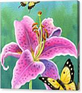 Lily And Butterflies Canvas Print