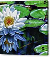 Lily And Dragon Flies Canvas Print